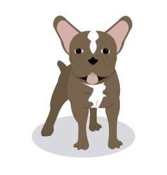 French bulldog design vector