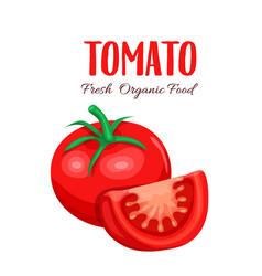 tomato slice vector image vector image