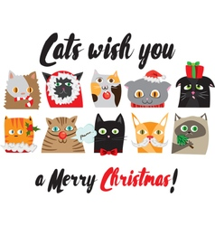 Christmas cats portraits cute animal characters vector