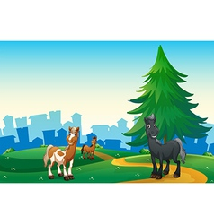 Three horses at the hilltop across the village vector