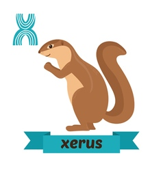 Xerus x letter cute children animal alphabet in vector