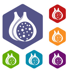 fig fruit icons set hexagon vector image