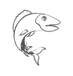 Blurred sketch silhouette of trout fish vector