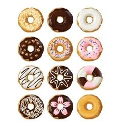 Set delicious donuts in glaze vector image vector image
