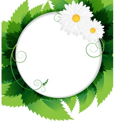 Summer foliage background vector image