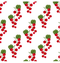 watercolor seamless pattern with red currant vector image