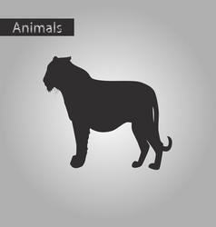 Black and white style icon of tiger vector