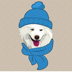 hipster Samoyed dog smile vector image