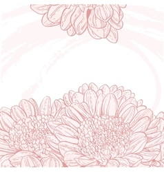 Line drawings pink chrysanthemum grunge background vector