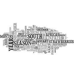 what s in season in south africa text word cloud vector image