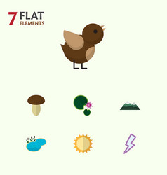Flat icon nature set of bird lightning solar and vector