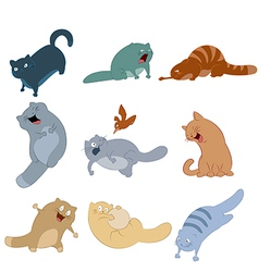 Colection of cats vector image