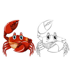 animal outline for crab vector image vector image