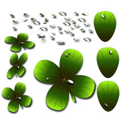4 leaf clover vector