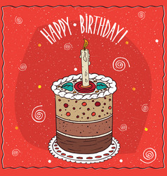 cake round shape with a burning candle vector image