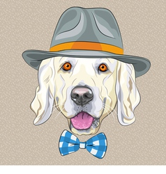 hipster dog Golden Retriever vector image vector image