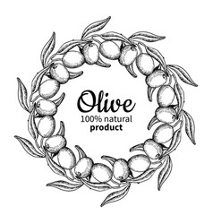 olive wreath hand drawn of vector image vector image