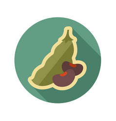 Beans flat icon vegetable vector
