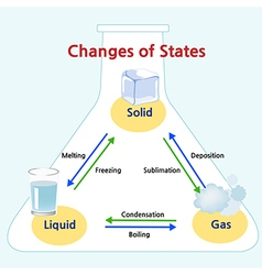 Changes of states vector image