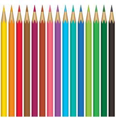 Pencils collection vector image vector image
