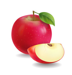 Red apples with green leaves and apple slice vector