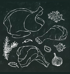 Chicken or turkey body parts set fowl meat vector