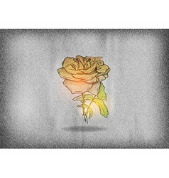 flower rose on the grey texture vector image