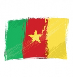 grunge Cameroon flag vector image vector image
