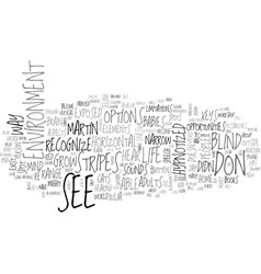 What s in your blind spot text word cloud concept vector