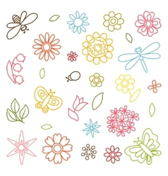 Natural set of beautiful flowers beetles and vector
