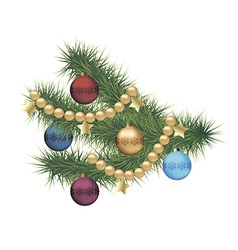 Christmas pine tree branch vector image