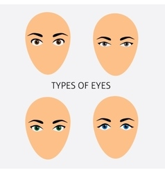 Set of woman eyes types flat vector