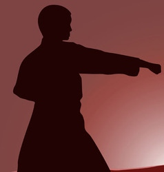 Two men are engaged in karate at sunset the sun vector