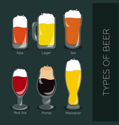types of beer vector image