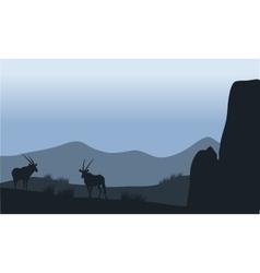 Antelope in hills silhouette vector
