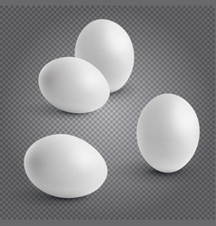 Set realistic chickens of egg easter chicken vector