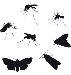 insects silhouettes vector image vector image