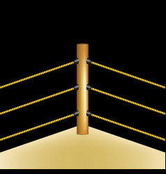 boxing ring with brown ropes vector image