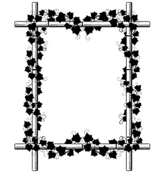 Ivy around bamboo frame vector