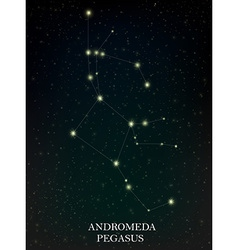 Andromeda and pegasus constellation vector