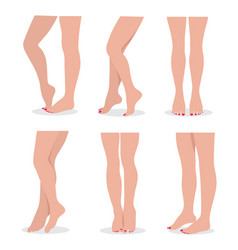 beautiful elegant woman legs and feet in different vector image