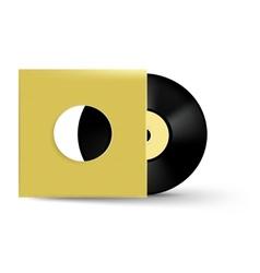 Vinyl object vector image
