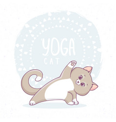 Cat yoga asana vector