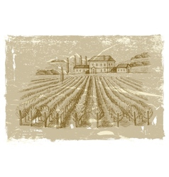 Hand drawn wineyard vector
