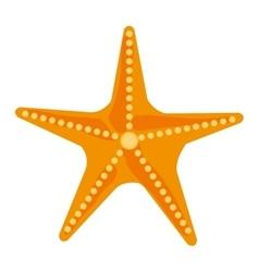 Colorful ocean starfish graphic vector