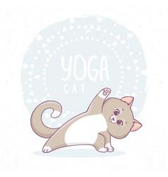 Cat yoga asana vector