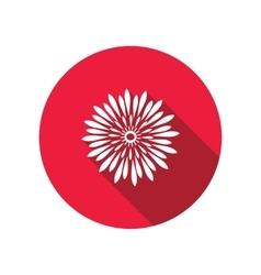 Chrysanthemum flower icons floral symbol round vector