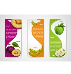Mixed organic fruits banners collection vector image