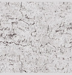 seamless grunge texture vector image vector image