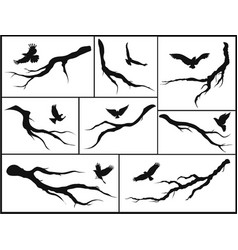 set of branches and birds vector image vector image